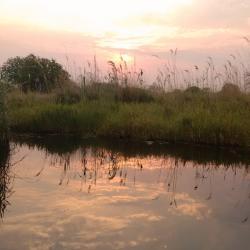 Unterwegs per Boot im Okavango Delta