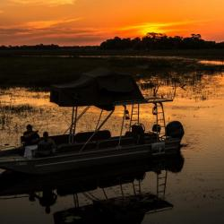 Sunset Bootstour auf dem Thamalakane Fluss