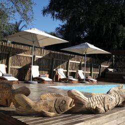 Pool Shakawe Lodge