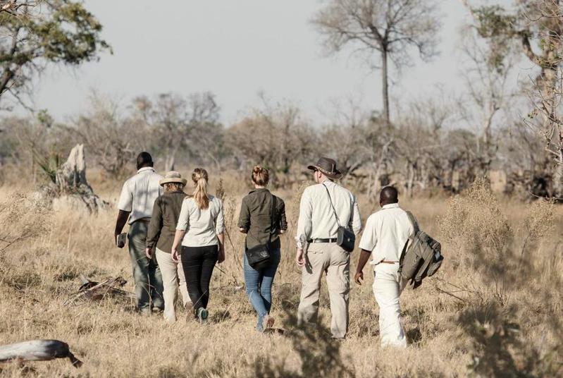 Auf Fußsafari mit erfahrenen Rangern